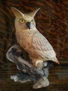 Colin Ward's prize-winning owl