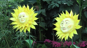 These sunflowers are sure to make you smile!