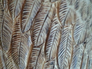 Detail on owl's feathers