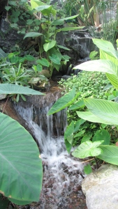 The tropical pyramid has a water feature consisting of a waterfall and fish-filled pond.
