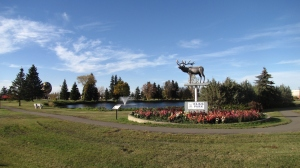 Beautiful Elk's Park in Vegreville, Alberta